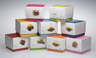 new21_Teaposy Boxes.jpg