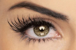 new38_eyelashes1.jpg