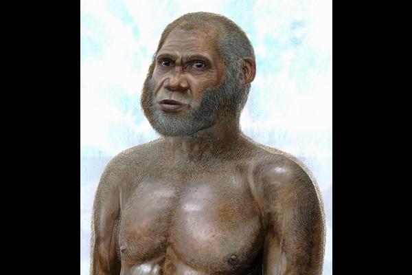 images_512017_2_954351_1_1217-femur-ancient-human_standard.png