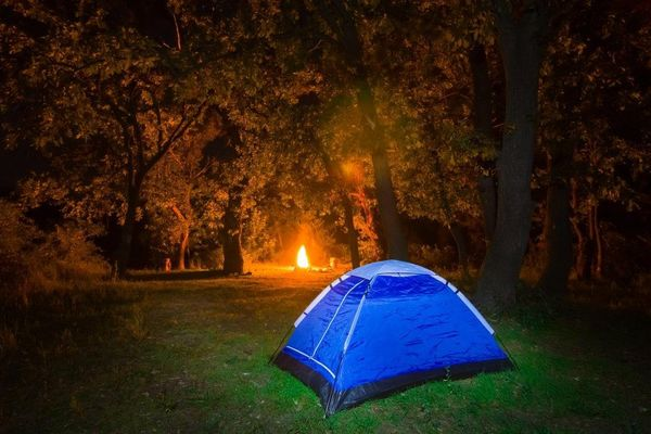 images_622017_fox-wood-camping-south-east-england-west-sussex-medium.jpg