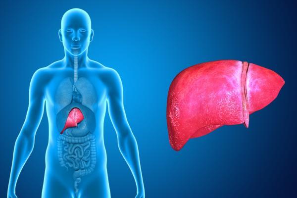 images_152017_2_liver_disease.jpg