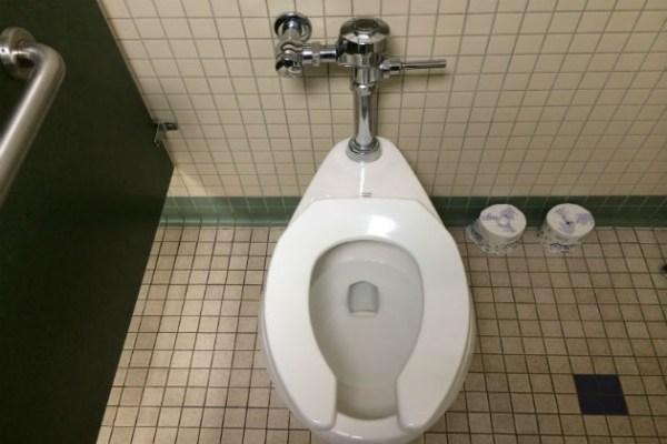 images_872017_2_toilet.jpg
