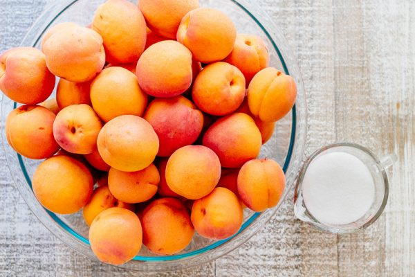 images_482017_2_Apricot-Fruit-Leather-600x400.jpg